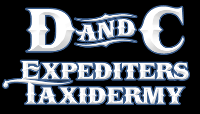D and C Expediting